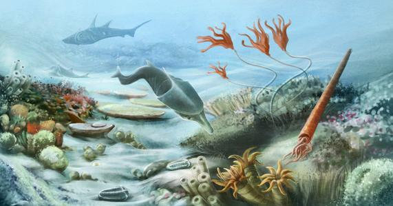 1 Paleozoic Animals
