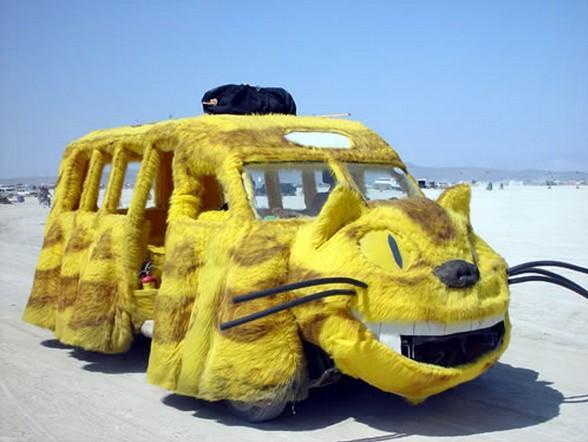 74a Car yellow cat