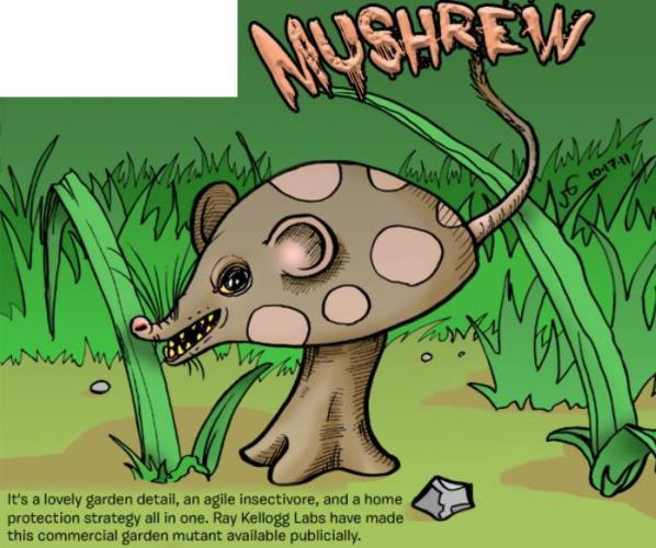 Mushrew