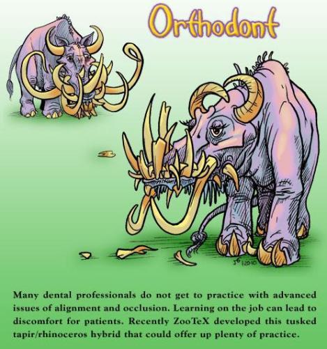 orthodont