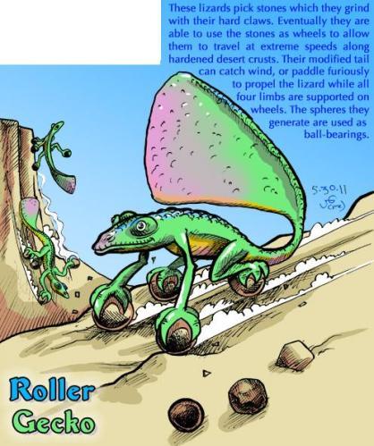 Roller Gecko
