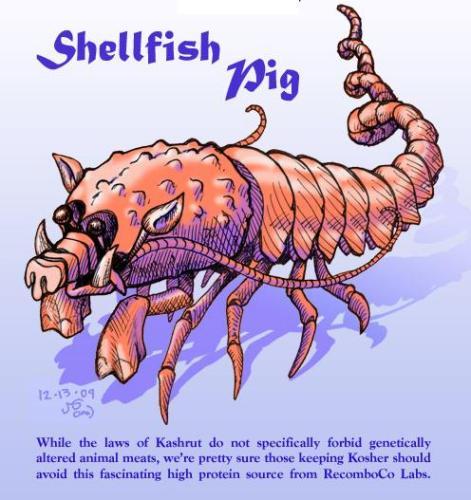 shellfish pig