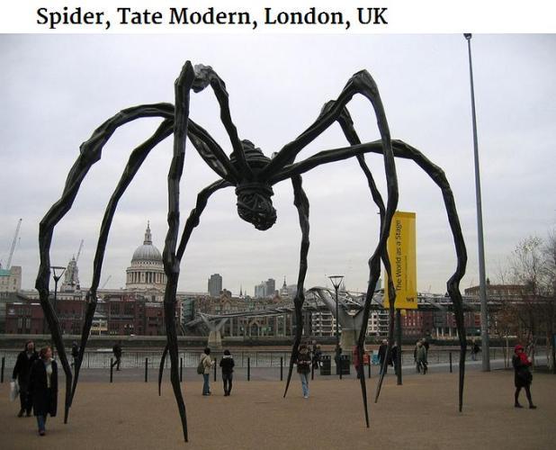 spider London
