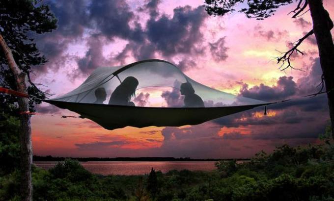 Tent in between Trees