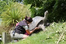 woman zookeeper-3