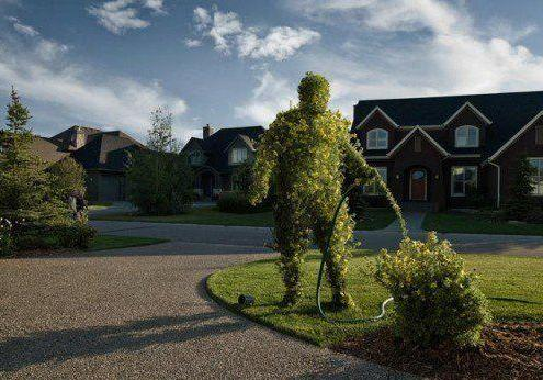 Treeman watering tree