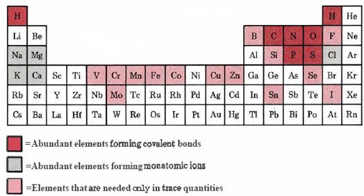 Abundance Periodic Table