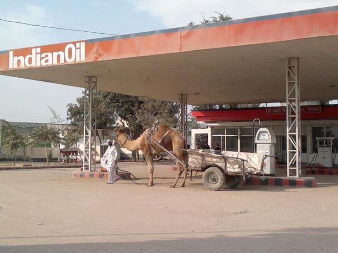 2 Camel cart needs petrol