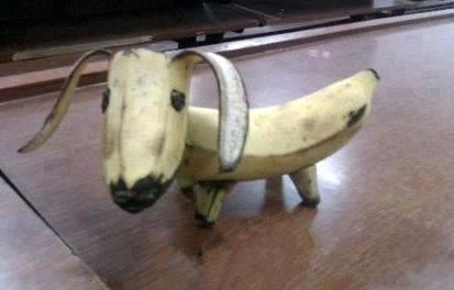 1 Banana Dog