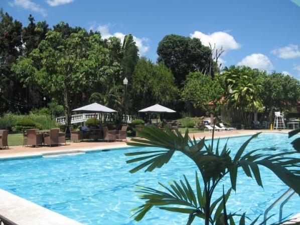 35 Swimming Pool Green