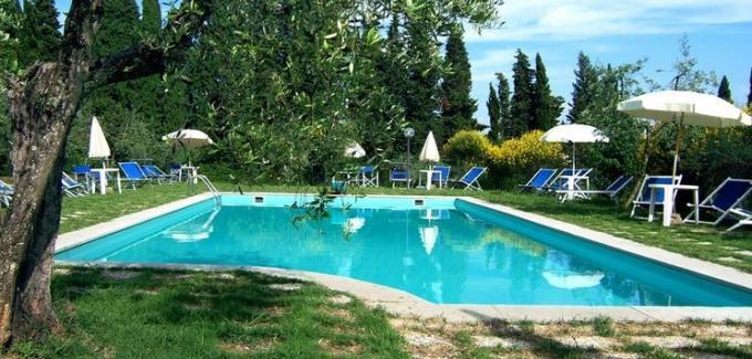 37 Swimming Pool Green