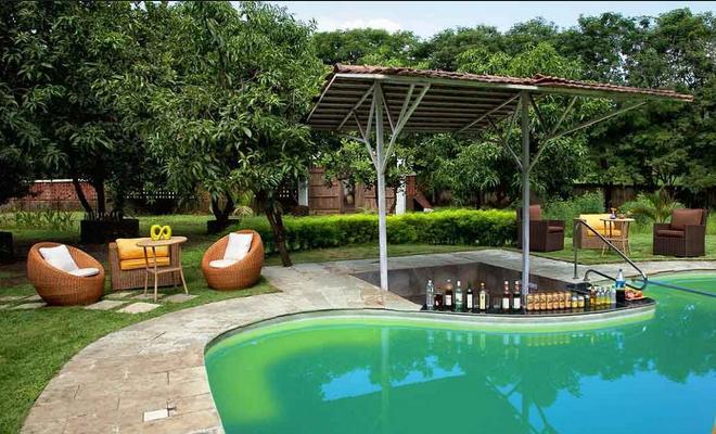43 Swimming Pool Green