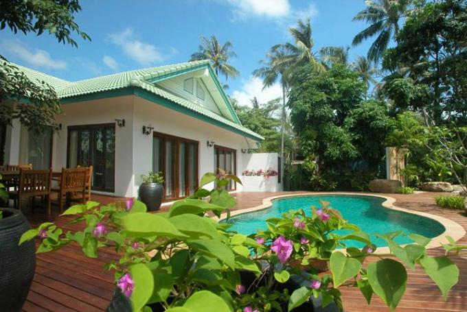 62 Swimming Pool Green