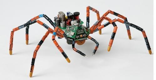 41a Robot spider