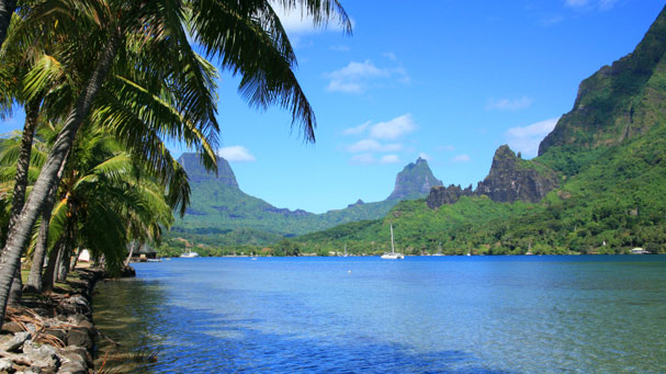 cook-s-bay-in-the-island-of-moorea-large