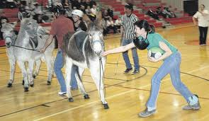 Donkey fighting-4