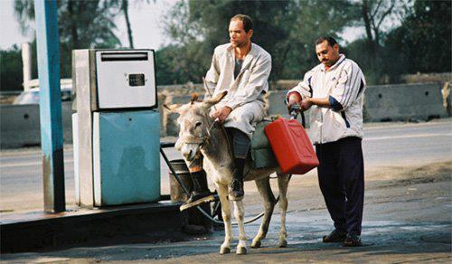 10b filling oil for donkey ride