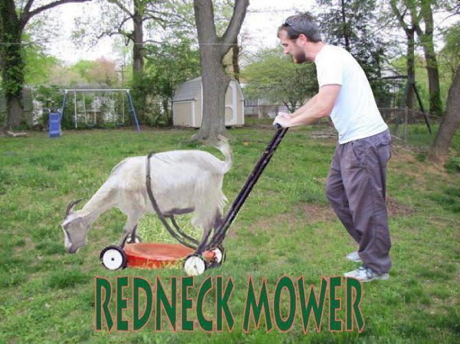 10g Goat mower