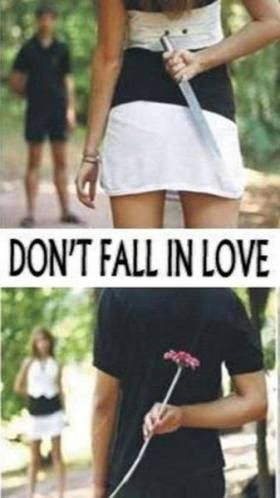 10l dont fall in love