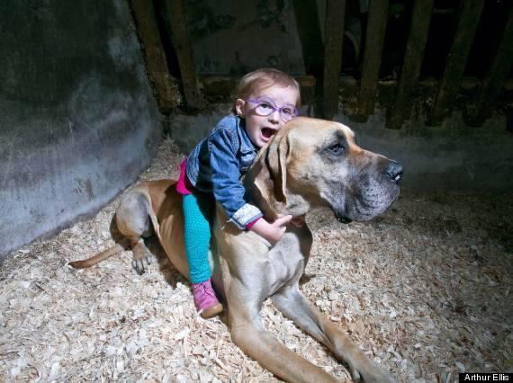 1a Dog ride