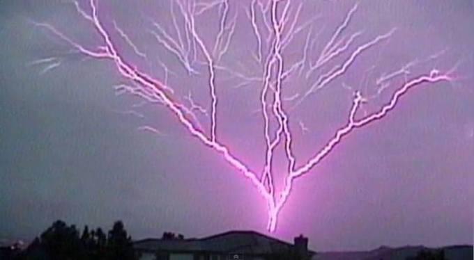 1t lightning tree