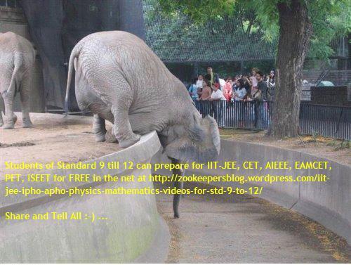 3s elephant bending