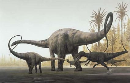 4 diplodocus