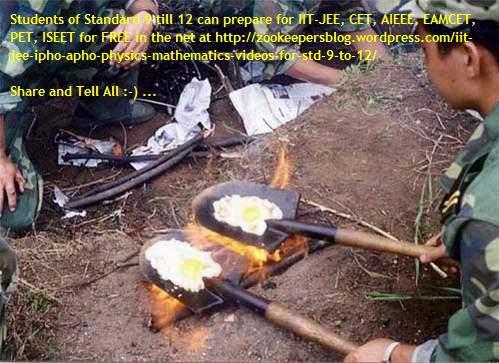 omlet in spade