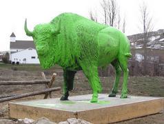 10a Green buffalo