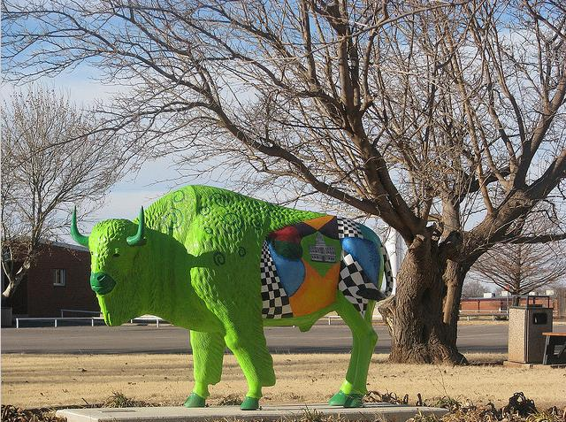 11c Green Buffalo
