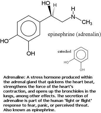 2 Epinephrine