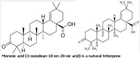 2 Moronic acid