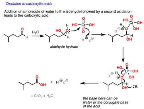 22 Oxidation of aldehyde to carboxylic acid by chromic acid