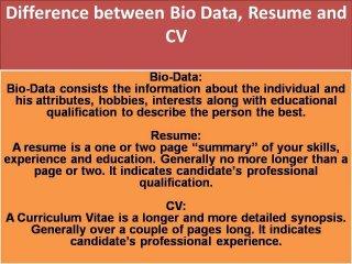 CV-Biodata-Resume