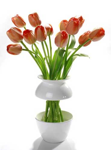 FlowerVas2
