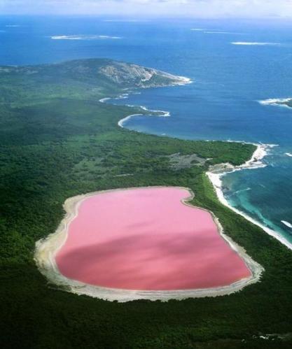 Hillar Pink Lake