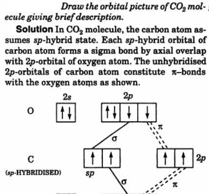1 Draw the orbital picture of