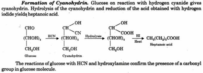 1 Formation of Cynohydrin