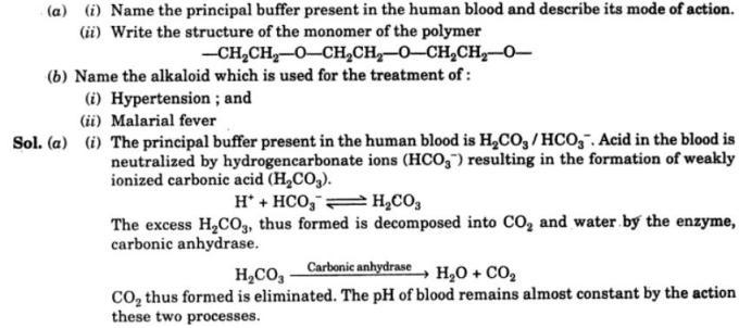 1 principal buffer present in human blood