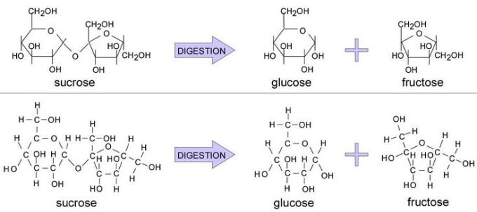 1 sucrose = Glucose + Fructose