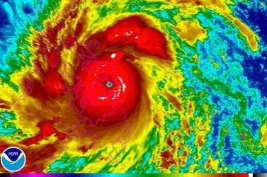 1 Typhoon