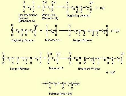 11 Chem