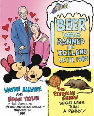 11a Beer was banned in iceland 1989
