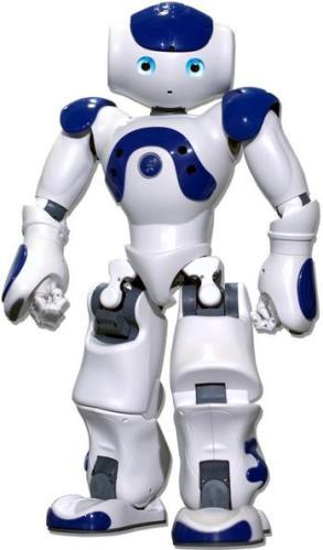 11m Robot