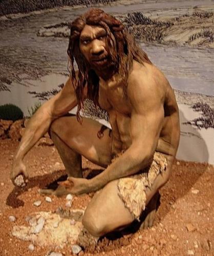 12 Homo heidelbergensis