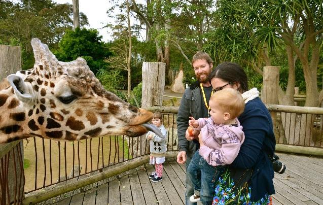 12e Giraffe Guest house