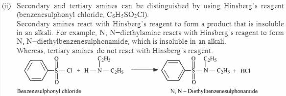 13.2-2 Ans Nitrogen in Organic Compounds