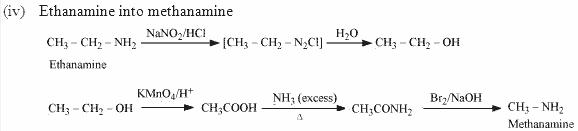 13.5-4 Ans Nitrogen in Organic Compounds