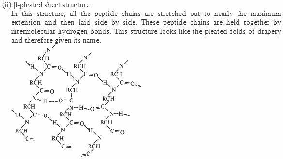 14.13-2 Ans Biomolecules CBSE