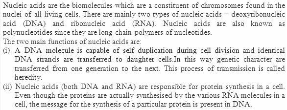 14.21 Ans Biomolecules CBSE